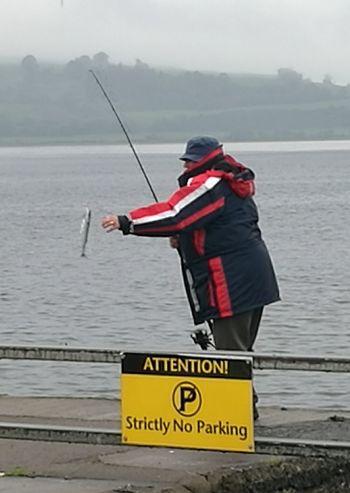 Fishy Fishy Fishy  Mackerel Scotland Argyll Fisherman Today's Hot Look