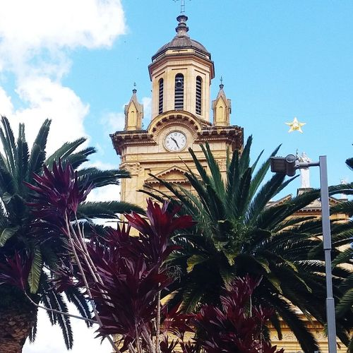 Church Clock Tree City Clock Tower Time Clock Face Sky Architecture Building Exterior Built Structure Palm Tree Cathedral Church Catholicism