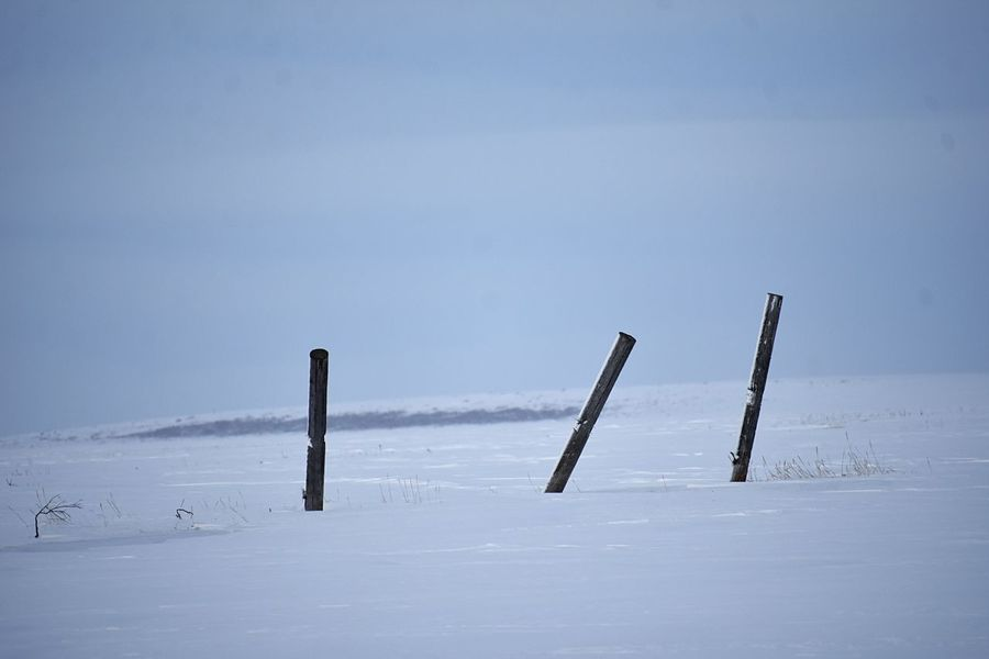 Marking posts in snow Copy Space Alaska Arctic EyeEm Selects Nature Sky No People Scenics - Nature Beauty In Nature Water Tranquil Scene Wooden Post Post In A Row Outdoors Tranquility Blue Day Sunny