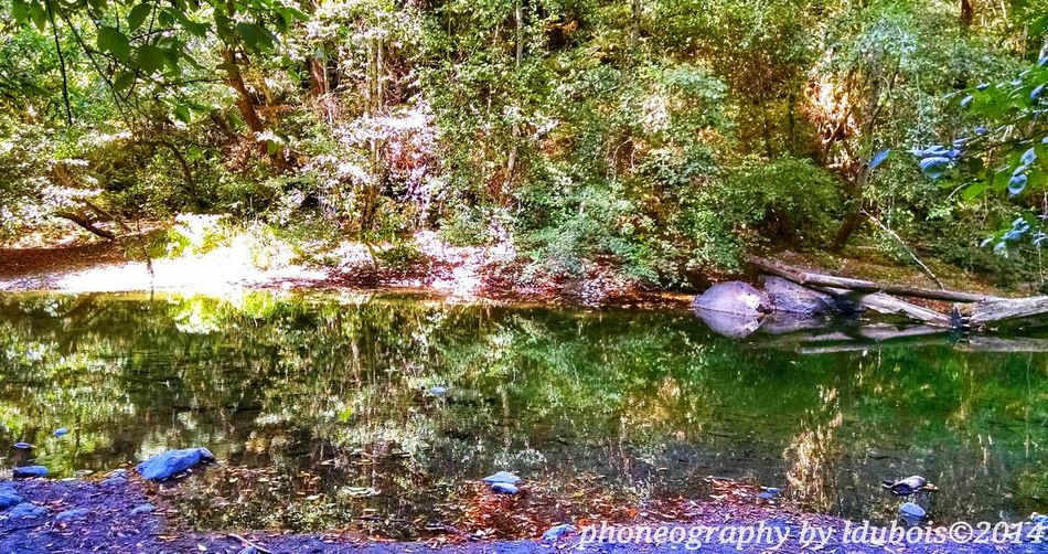 Ldubois Enjoying Life Nature Time To Reflect