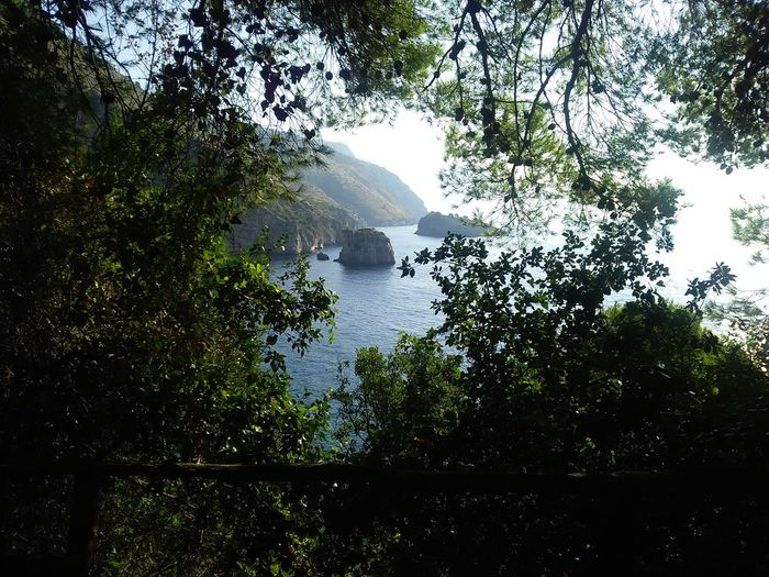 Story of summer Beach Costierasorrentina Nature No People Outdoors Sorrento Tree Water