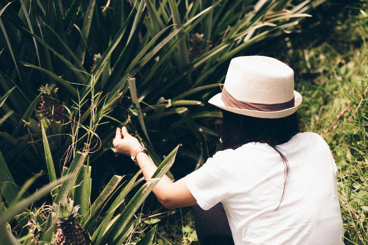 rear view, woman, pineapple field Hat Plant Real People Growth Lifestyles Nature One Person Clothing Land Women Day Field Adult Green Color Rear View Agriculture Casual Clothing Beauty In Nature Outdoors Farmer Sun Hat Agriculture Pineapple Plantation Business Humanity Meets Technology #NotYourCliche Love Letter International Women's Day 2019 My Best Photo