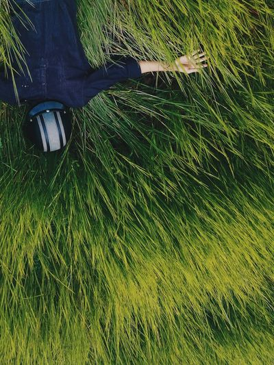 High angle view of man lying on grassy field