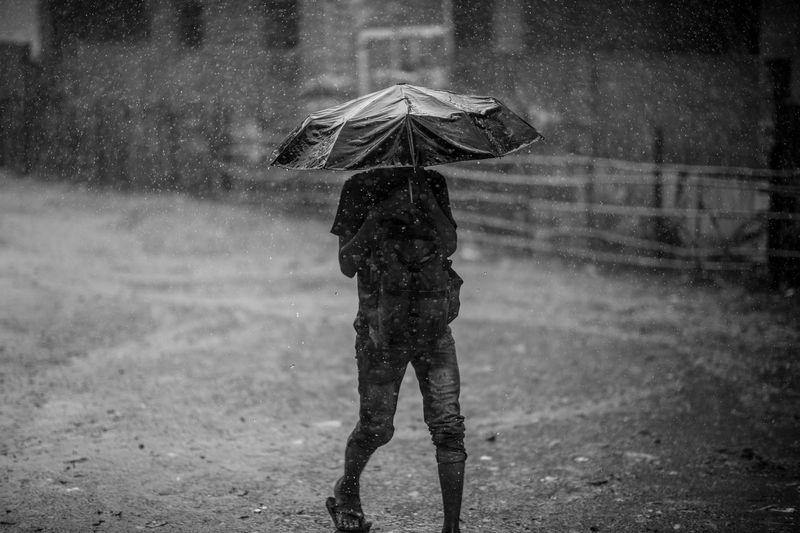 Man With Umbrella Walking On Road During Monsoon
