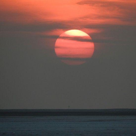 Another beautiful sunset captured World largest salt desert Kutch Whitedesert Sunset Salt Nikon Beauty 50thpost Photooftheday Photo @beautifulgujarat