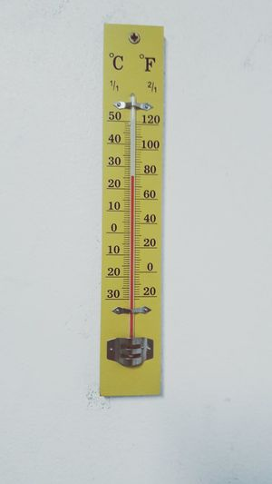 Thermometer 26