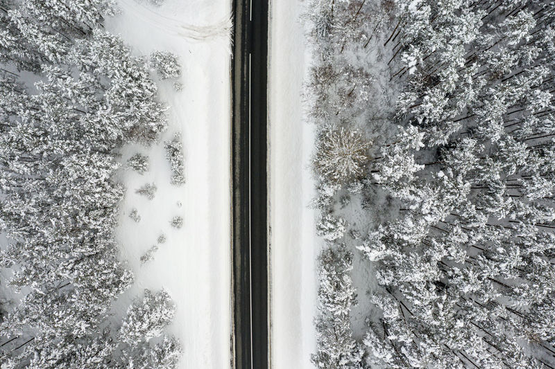 High angle view of trees seen through window during winter
