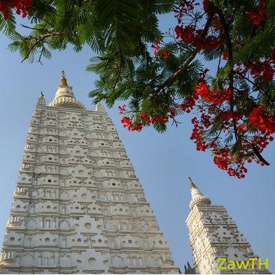 The place where is peaceful. ညိမ္းခ်မ္းေစရာ ထိုေနရာ Mandalay Myanmmar Burma Burmese Igers Igersmyanmar Igersmandalay Vscomyanmar Burmeseigers Exploremyanmar Goldenland Zawth GalaxyGrand2