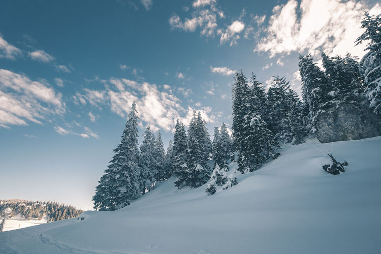 Beauty In Nature Cloud - Sky Cold Temperature Environment Land Mountain Nature Non-urban Scene Plant Scenics - Nature Skiing Sky Snow Snowcapped Mountain Sport Tranquil Scene Tranquility Tree Winter Winter Sport