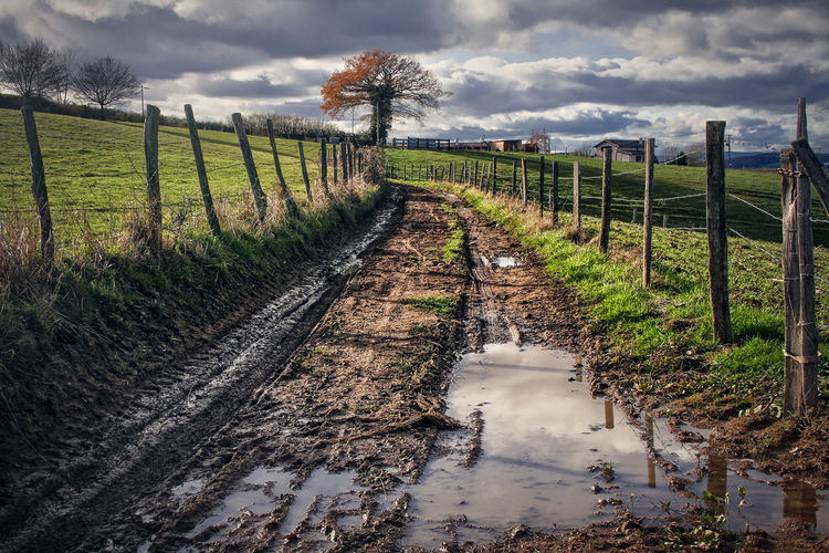 Autumn Country Path Beauty In Nature Cloud - Sky Day Field Fields Grass Landscape Mud Nature No People Outdoors Path In Nature Puddle Rural Scene Scenics Sky Tranquil Scene Tranquility Tree Water