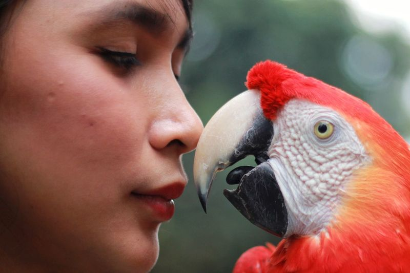 Close-up portrait of young woman and red macaw