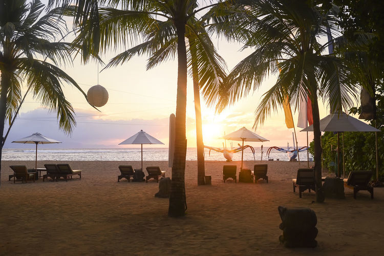 Stunning beautiful sunlight beach with relaxing scenery on a beach. Famous travel destination in Sanur, Bali, Indonesia. ASIA Bali, Indonesia Bautiful EyeEmNewHere INDONESIA Relaxing Beach Beauty In Nature Day Horizon Over Water Nature Outdoors Palm Tree Restaurant Sand Sanur Beach Scenics Sea Sky Sunset Tranquil Scene Tranquility Tree Vacations Water