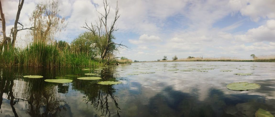 Water Nature Nature_collection Landscape Landscape_Collection Panorama River Oder Waterfront Beauty In Nature Beautiful Nature