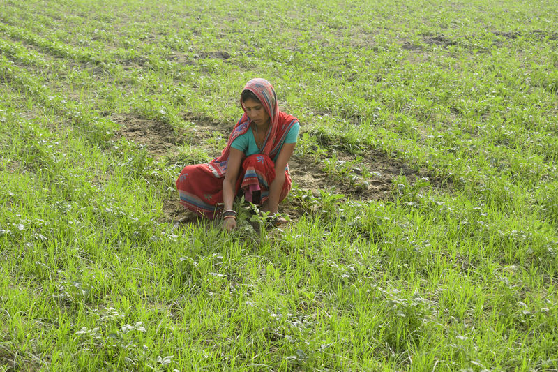 Indian woman farmer working at agricultural field
