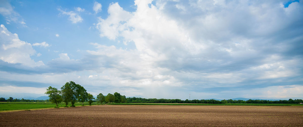 Italian landscape in Friuli Venezia Giulia. Fields, grass, trees and blue sky with clouds Agriculture Beauty In Nature Blue Cloud Cloud - Sky Cloudy Field Grass Idyllic Landscape Nature No People Non-urban Scene Outdoors Rural Scene Scenics Sky Tranquil Scene Tranquility Tree