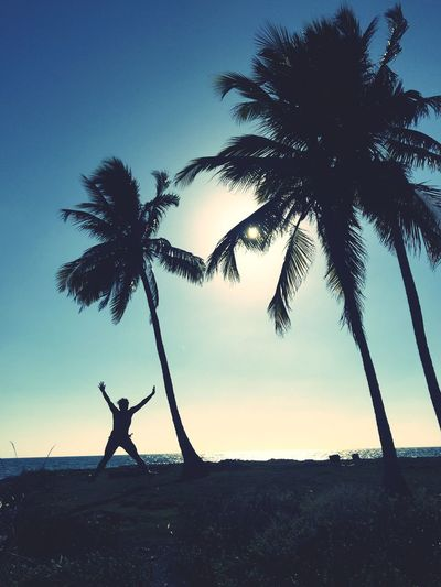 Young Woman Palm Trees Coconut Palms Beach Caribbean Silhouette Fun Star Jump Exercising Exercise Desert Island Sunset Caribbean Sea Colombia Mucura Happy Overjoyed Holiday Holiday Spirit Breathing Space