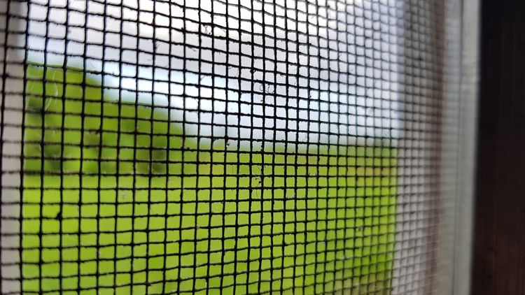 Net - Sports Equipment Grid Sport Green Color Close-up Day No People Indoors  Tennis Soccer Field Sky Eyeem Photography Eyeem Philippines Streetphotography Water Horizon Over Water Outdoors Photograpghy  ART CRIMES Sunlight Road The Way Forward Beauty In Nature Clear Sky Tranquility Outdoors Photograpghy
