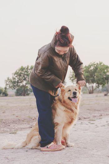 Woman holding golden retriever ears on field