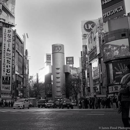 Shibuya japan Night View Nightlife Architecture City Urban Scene Blackandwhite