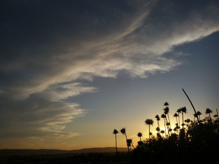 Sky And Clouds Amazing Beauty In Nature Natureporn Landspace Nature_seekers Sun Clouds View Beautiful Sky Flowers Sunset Sunrise Mountain