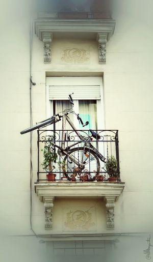 Bike EyeEm Best