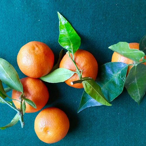 mandarins on green cloth flat lay Wintertime Diet Vegan Orange Color Green Color Cloth Mandarins Leaf Fruit Healthy Eating Food And Drink Freshness Food No People Citrus Fruit Close-up Growth Day Plant Branch Nature Indoors  Food Stories