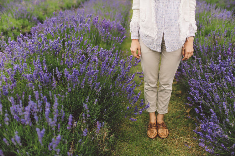 Beauty In Nature Casual Clothing Day Feet Flower Flowers Grass Growth Lavanda Lavander Lavander Flowers Lavanderfields Leisure Activity Lifestyles Low Section Nature Outdoors Pink Color Plant Standing Out Of The Box