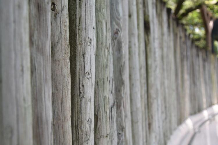Unedited Wooden