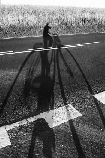 Day Focus On Shadow Leisure Activity Lifestyles Mammal Nature Outdoors Outline Shadow Sunlight Sunny Unrecognizable Person The City Light BYOPaper!
