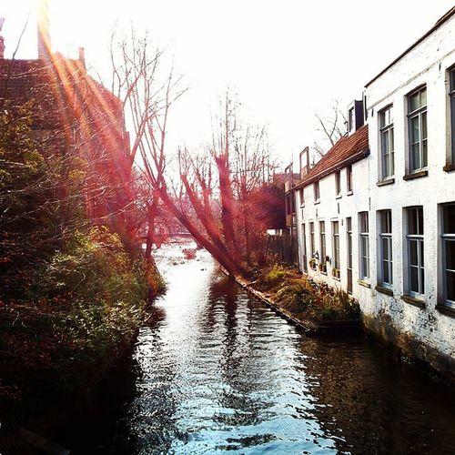 Miss Bruges Bruges Magiccity Beautiful Scorcimeravigliosi