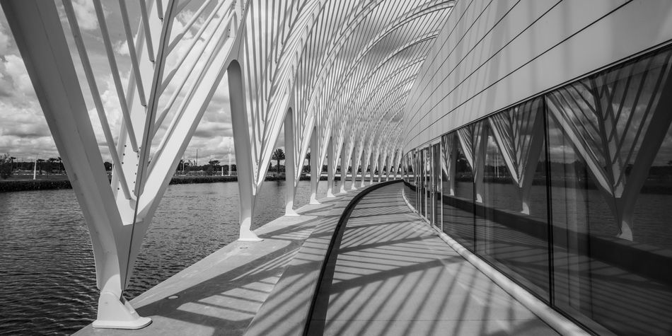 Santiago Calatrava's Florida Polytechnic. This amazing architectural design includes a roof that adjusts to the suns position to regulate desired light. Campus Architecture Black And White Friday Building Exterior Built Structure Day Design No People Polytech