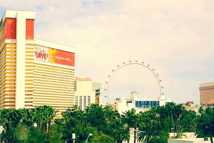 Vegas Baby Natural Beauty Amazing View