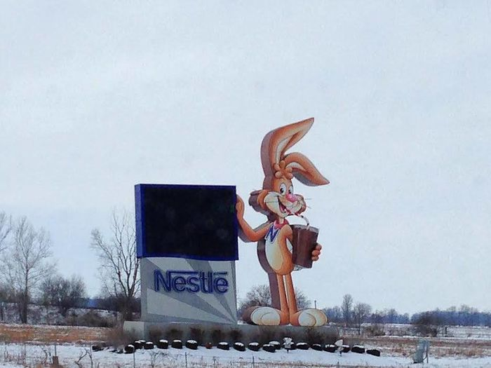 If you are traveling to Anderson Indiana don't blink because along their highway they have this Nestle Quick Bunny standing next to the main highway. Roadside America Roadside Attractions Activity Day Men Nature One Man Only One Person Only Men Outdoors People Skill  Sky Sport Travel Destinations Young Adult