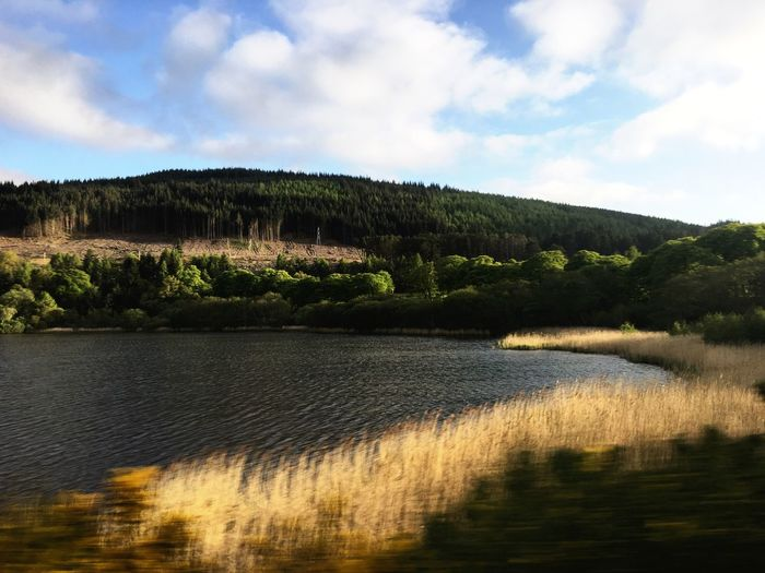 Train, Inverness to Thurso. Near Tain Landscape Water Hills Trees Scotland