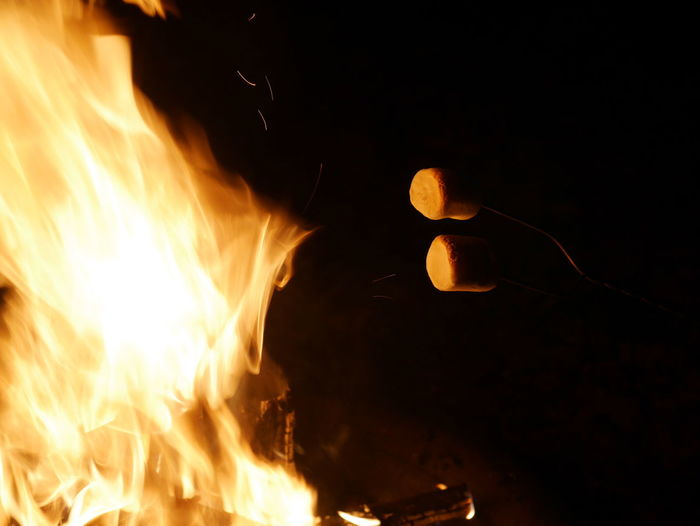 Yum, marshmallows melting by the fire. Marshmallow Roasting Marshmallow Heating Marshmallows Outdoors Hot Fire Dark And Fire Flames Flamed Burning Flames & Fire Fuego Firepit Camping Fire Camping Fun Firepits No People Fuego 🔥 Burn