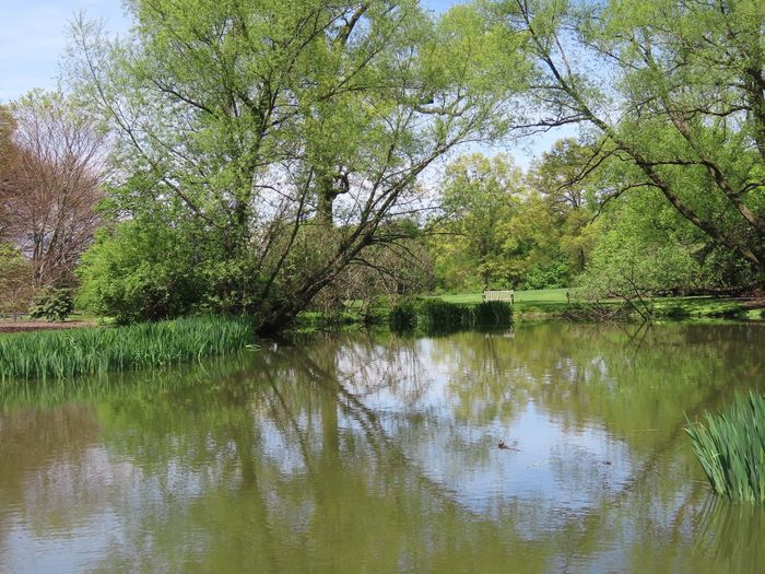 Landscape tranquil scene water reflections springtime greenery beauty in nature outdoors Scenics - Nature No People