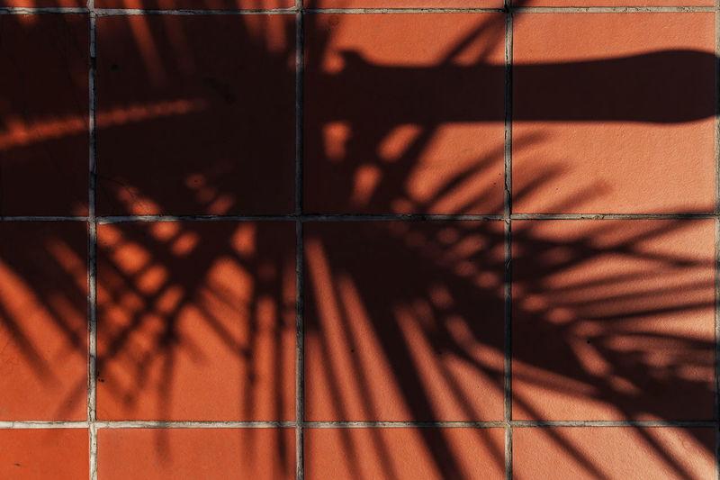 Summer Shade -