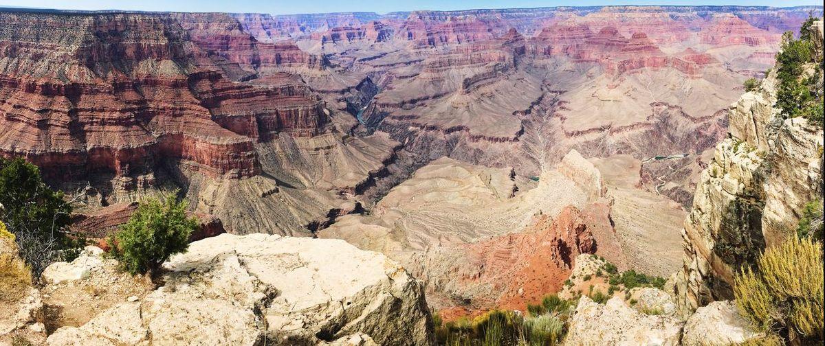 Grand Canyon Desert Desert Landscape Wildlife Tree Mountain Textured  Landscape Sky Rugged Rock Arid Geology Rock Formation Arid Landscape Eroded Arid Climate Rough