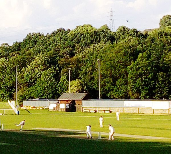 Cricket Match Cricket Field Cricketer Cricket! Village Life Village View English Green Green Green!  Green Color Tree Sport Sportsman Sports Team