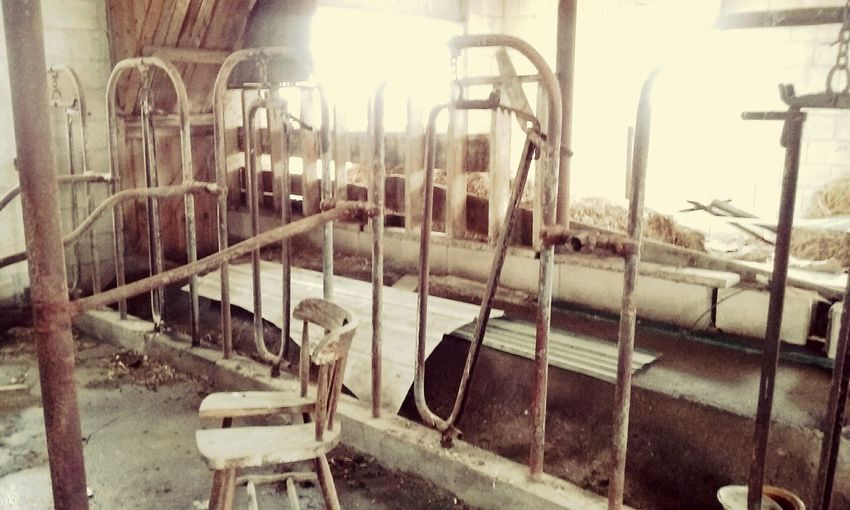 Metal No People Cage Day Indoors  Dairy Barn Farm Land Iowa Farms Barns