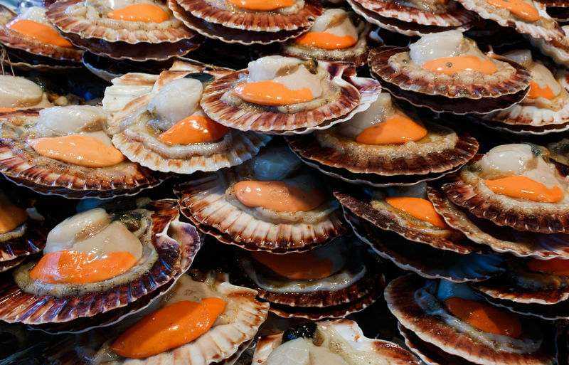 Full Frame Shot Of Fresh Scallops