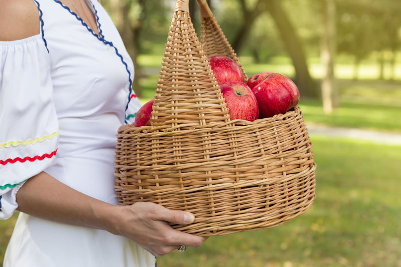 Midsection of woman holding basket full of apples in park