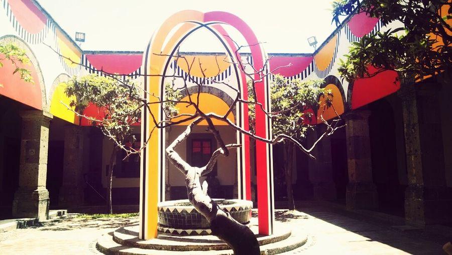 Hospicio Cabañas Rojo Amarillo Natutalesa