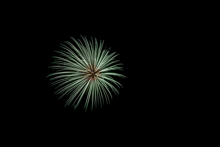 Arts Culture And Entertainment Black Background Celebration Clear Sky Close-up Copy Space Event Exploding Firework Firework - Man Made Object Firework Display Illuminated Low Angle View Multi Colored Night No People Outdoors Sky