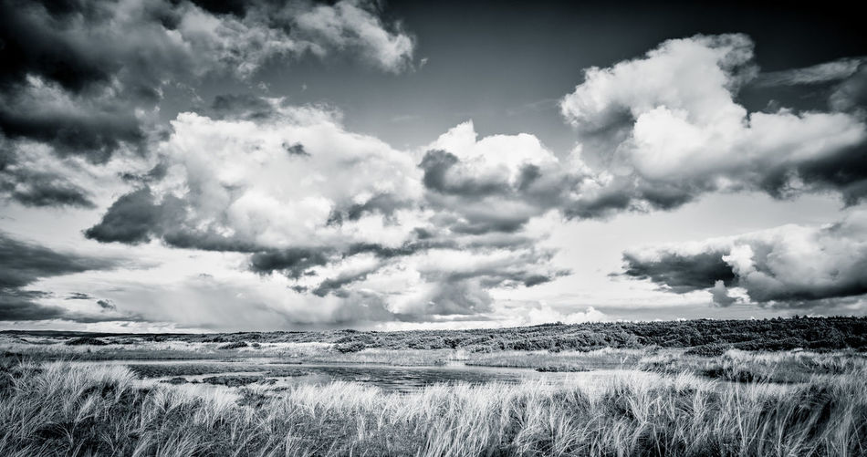 Cloudscape landscape nature dunes Oregon Cloudscape Dunes Nature Oregon Beauty In Nature Black And White Photography Cloud - Sky Environment Field Grass Horizon Over Land Idyllic Land Landscape Nature No People Non-urban Scene Ominous Oregon Coast Outdoors Plant Scenics - Nature Sky Tranquil Scene Tranquility