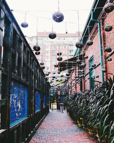 Walks in The Distillery District IG: @haiilstorm IG: @haiilstorm Cityscapes Street Streetphotography Toronto Distillery District Taking Photos Explore Colors Fall Colorful Cobblestones EyeEm Eye4photography  No People Outdoors Architecture Urban City Life Urbanphotography Urban Landscape Create Createcommune