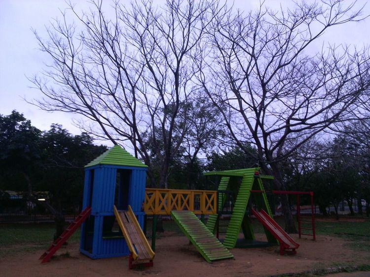Otoño 🍁 Outumnpark Parque  Nature Arboles Secos Paseos Y Fotografia Tranquil Nature Scene Eyeem Paraguay Season