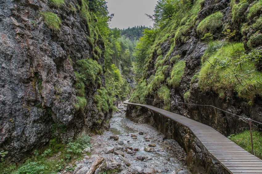 Beauty In Nature Curve Footpath Green Green Color Grießbachklamm Erpfendorf Tirol Growth Klamm Long Majestic Mountain Narrow Nature No People Non Urban Scene Non-urban Scene Outdoors Rock Formation The Way Forward Tourism Tree