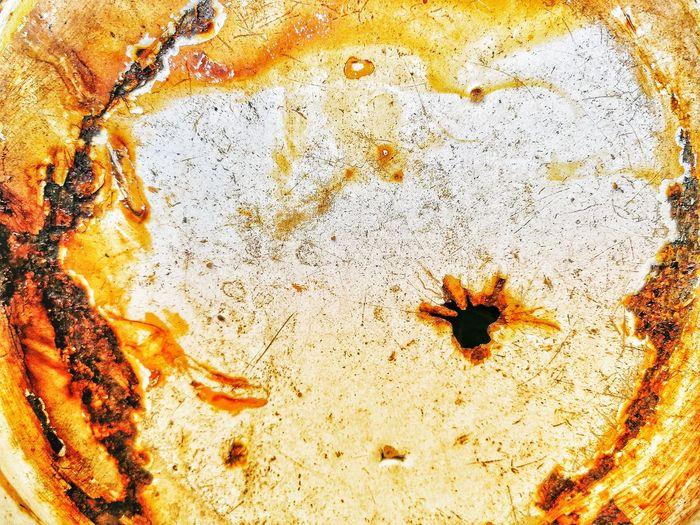 High angle view of orange leaf