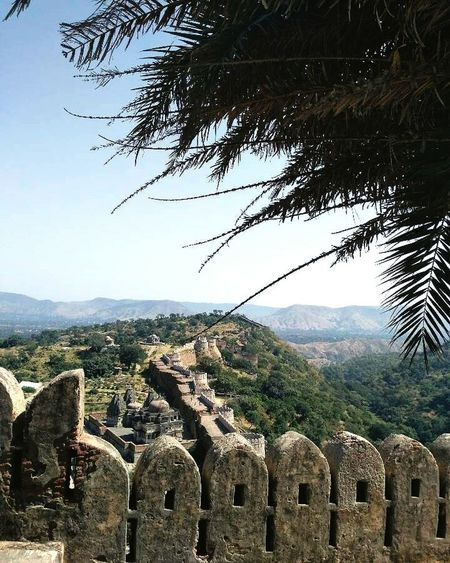 Mountain Tree Architecture Day Outdoors Arhitecture Design Kumbhalgarh Fort Kumbhalgarh Thegreatwall Royal Rajputs Beautiful Architecture_collection Architectural Feature Architecturelovers Walls History Historical Building Historical Monuments History Through The Lens  Forts Forts Of India India Rajasthan Indiatravel